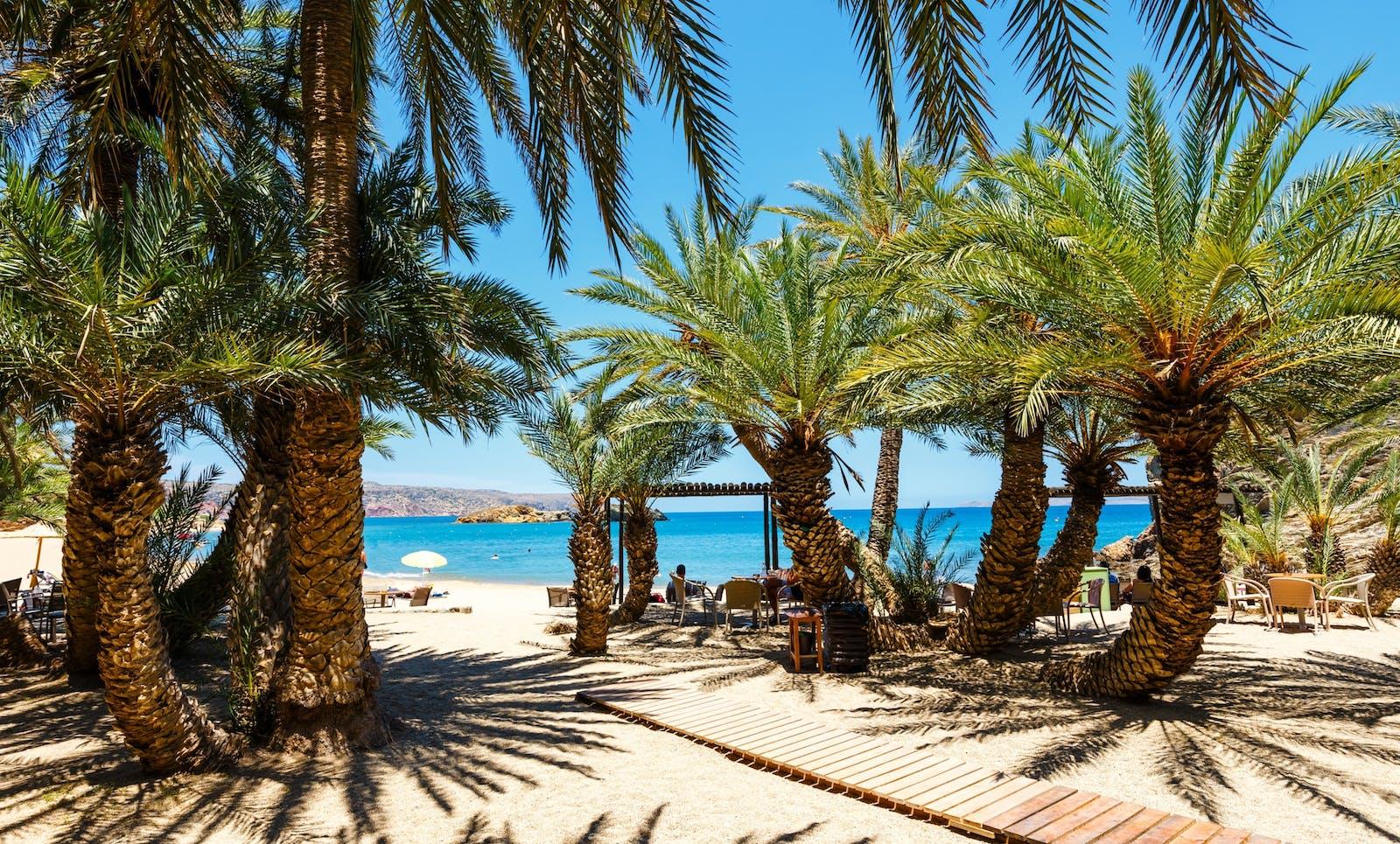 Palmenstrand Vai, Kreta   Griechenland.de